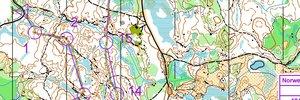 Norwegian spring mellom