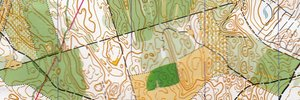 Lithuanian orienteering championship