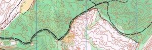 Auckland Orienteering Series 13 - Part 2