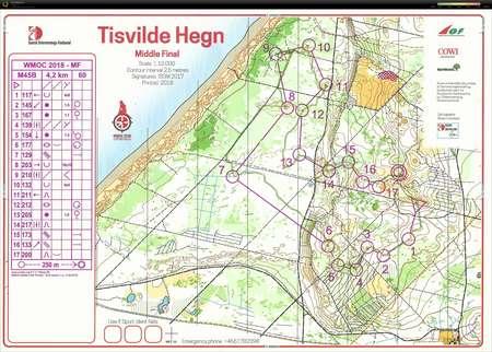 Wmoc 2018 Middle Final Tisvilde Hegn M45b July 11th 2018