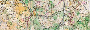 Alpe-Adria-Orienteering-Cup Relay
