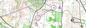Swedish EOC Obs-race D21