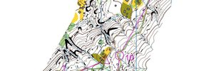 Map: Beautiful sprint maps - and hard training in the sun
