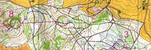 Map 2: Sprint- und Lang-SM