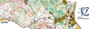 O-Ringen 2011 Etapp 4 D21