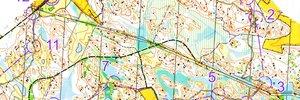 Hammarskog Middle Distance Training
