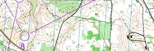 Swedish EOC Obs-race H21