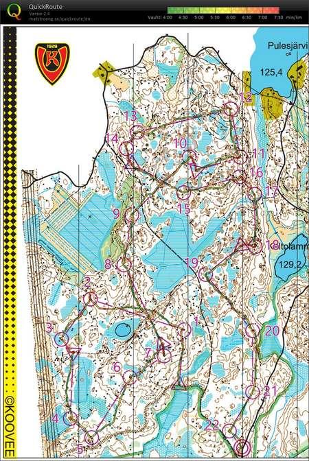 Pulesjarven Vedot August 23rd 2019 Orienteering Map From Mikko