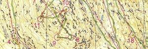 Leinster Orienteering Champs
