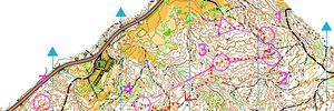JWOC 2014 MIDDLE QUALIFIER