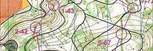 Map 2: Gold an der Nacht-OL SM