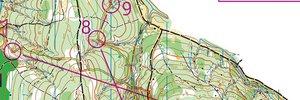 Orienteering, easy (EYOC2018/M16long)