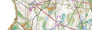 Estland träning 4 långsträckor