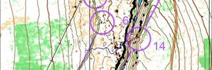 MapAnt-sprint - Skårhåmmårdalen