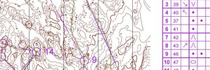 VM-läger Norge pass 2 - Kurvbild