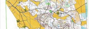 Map 2: Metsäleiri, koomat ja sit pitäis liikkua 6.-12.4.