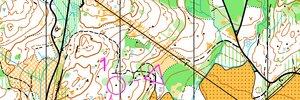 Norgescup mellomdistanse D 21