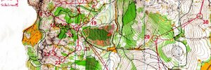 Map 9: Nagybodzas (MAP 2) - Hungarys WOC-training-camp