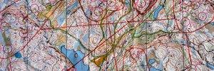 Trondheim: Grappolo = Grob/Fein