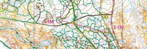 Norwegian long distance Championships Part 2