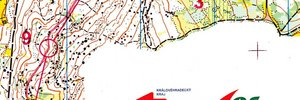 JWOC 2013 Middle Distance Qualification