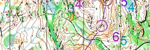 Selection race Middle 2 - WOC 2019