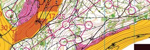 Map: Swiss Orienteering Grand Slam
