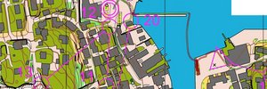 Map:  14.plass i NM-sprint