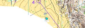 Australian Long Distance Champs - W21E