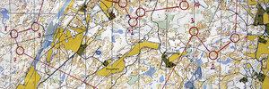 Szwecja 2014 - Trening#4 - skrócony klasyk Farskesjon