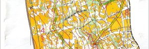 Map 4: National squad training camp- middle distance training
