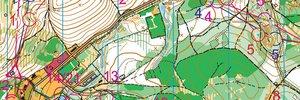World University Orienteering Championships Relay