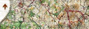 Alpe Adria Cup 1. dan
