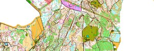 O-Ringen 2012 Etapp 5 H21 