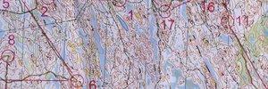 Map 11:      V�ren vaknar i Norden