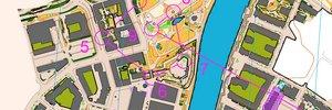 O-Ringen 2012 Etapp 3 (sprint) D21