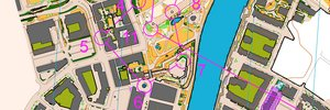 O-Ringen 2012 Etapp 3 (sprint) H21