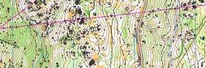 Camp Strelcha 11-2020 #1 Long legs