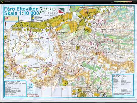 Gotland 2 Dagars E1 H21 July 4th 2015 Orienteering Map From