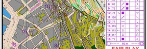 Bergen Sprint Camp Dag-sprint