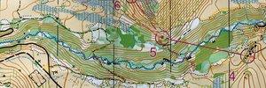Alpine O Middle Course 4