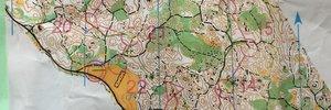 OLP1 - part 2   (TK3 - The Czech way)