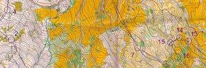 Map:    Schweizermeisterschaften Sprint und Langdistanz