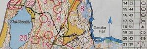 Stafett-träning Danska fall