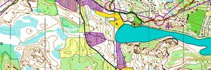 Jukola 7th leg - 2nd Team Halden SK