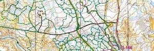 Norwegian long distance Championships Part 2 - bac